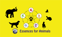 Pacific Essences® Essences for Animals logo Copyright © 2011 Pacific Essences® Ltd.